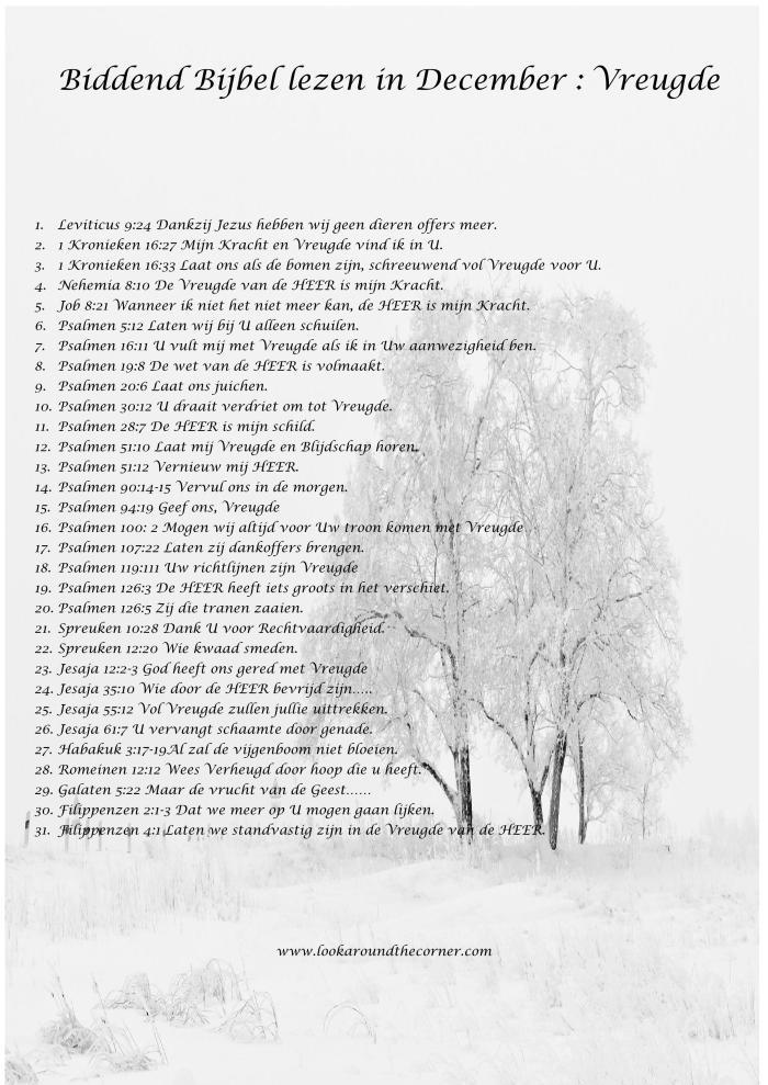 biddend-bijbel-lezen-in-december