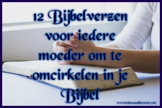 12bijbelver