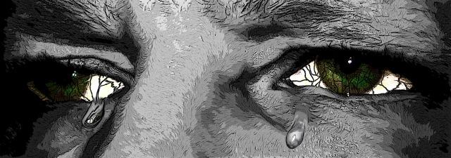 eyes-795647_1920