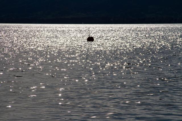 lake-2849996_1920