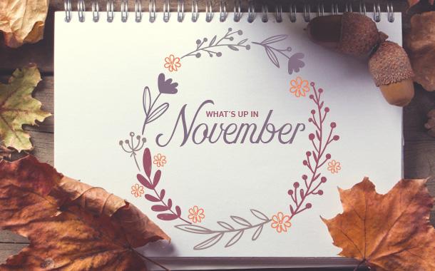 -november.jpg